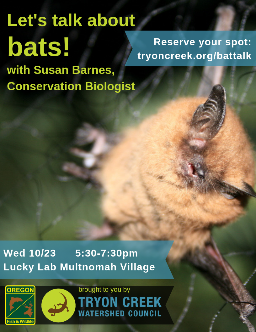 Bat Talk Flyer