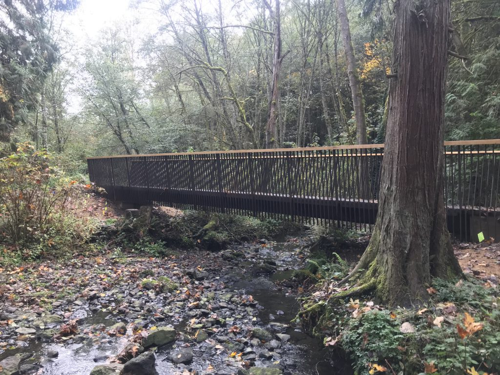 A new bridge crossing over a small creek in the forest