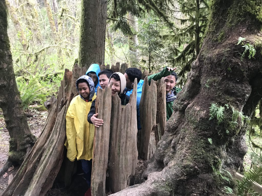 Kids standing inside a decayed tree stump in the forest