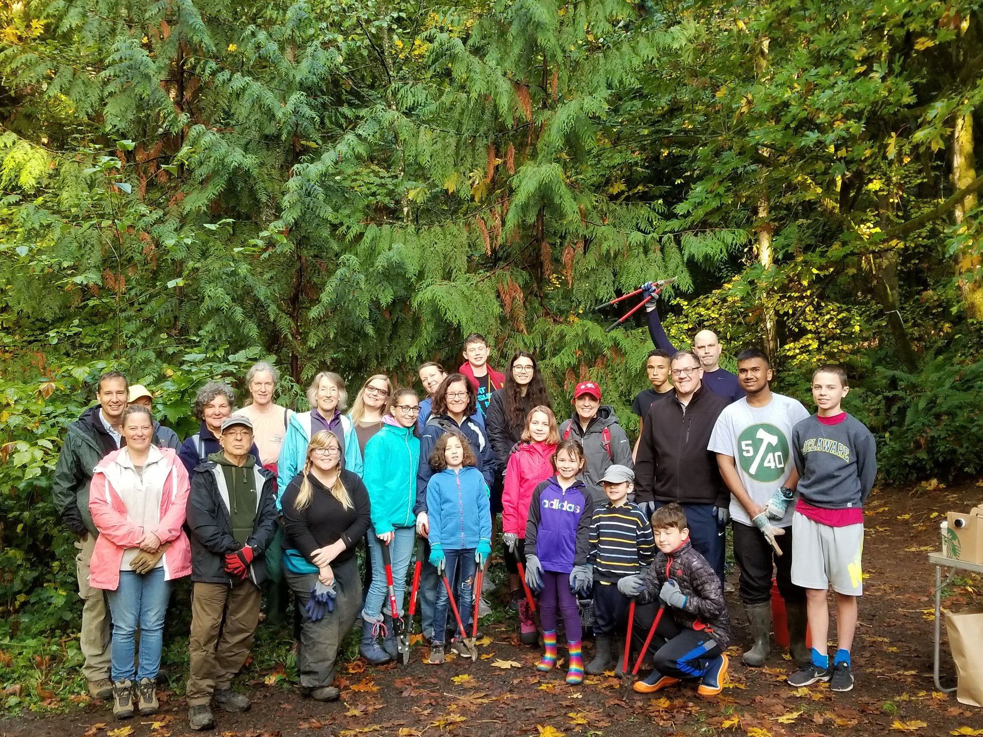 Large group of volunteers in the forest